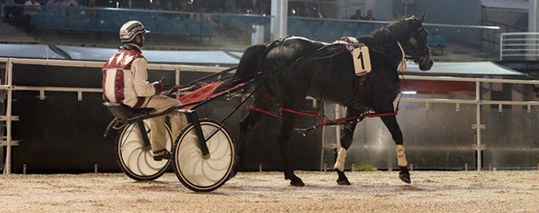 Auckland Trotting Club – 10 March 2017