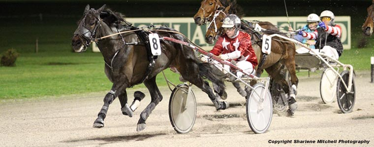 Auckland Trotting Club – 11 August 2017