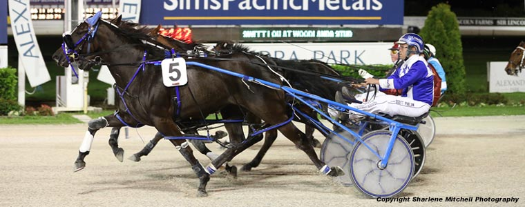 Auckland Trotting Club – 22 September 2017