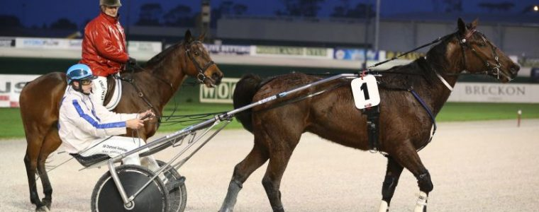 Auckland Trotting Club – 26 August 2016