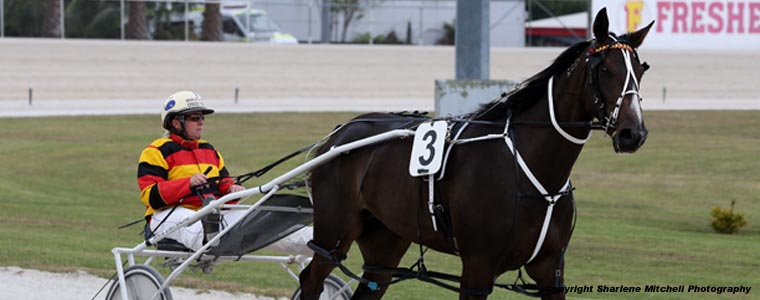 Auckland Trotting Club – 10 February 2017