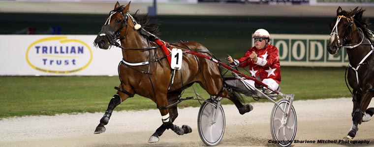 Auckland Trotting Club – 26 January 2017
