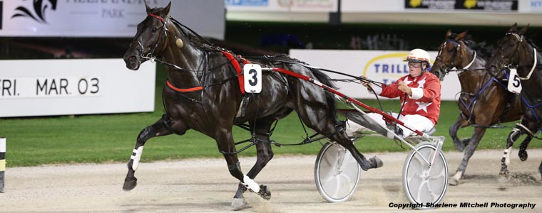 Auckland Trotting Club – 24 February 2017