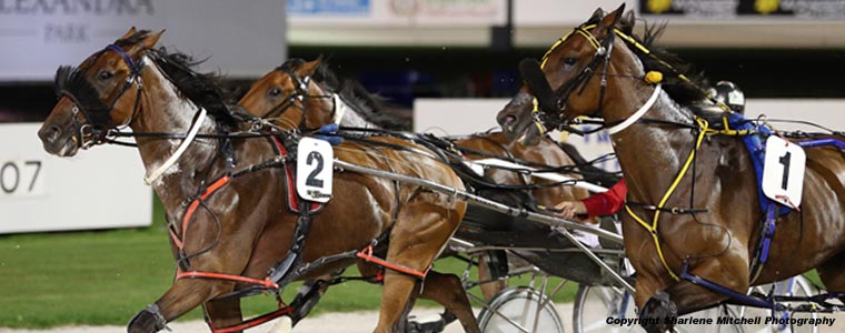 Auckland Trotting Club – 24 March 2017