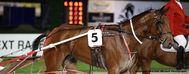 Auckland Trotting Club – 7 April 2017