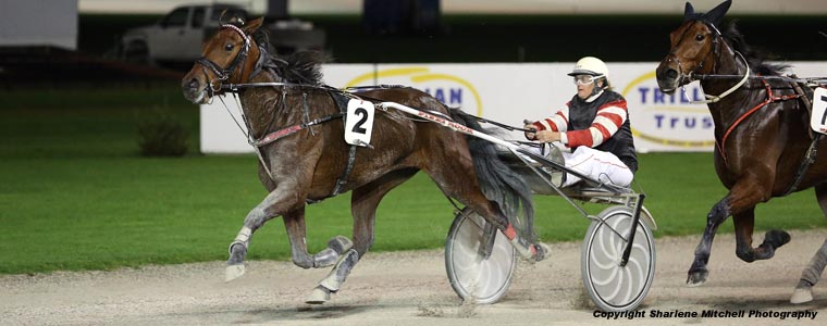 Auckland Trotting Club – 5 May 2017