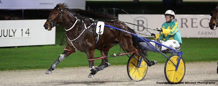 Auckland Trotting Club – 7 July 2017