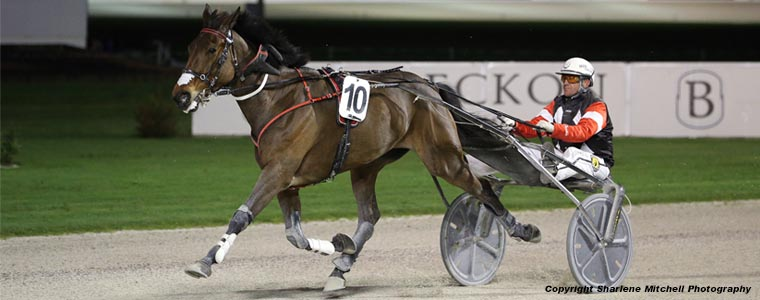 Auckland Trotting Club – 25 August 2017