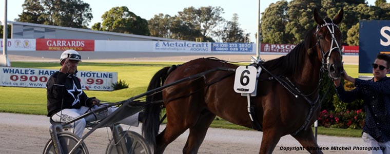 Auckland Trotting Club – 23 February 2018