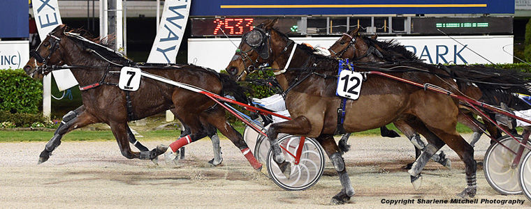 Auckland Trotting Club – 24 August 2018