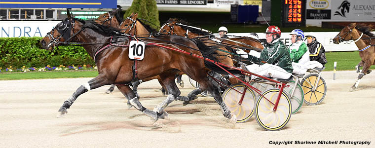 Auckland Trotting Club – 14 September 2018