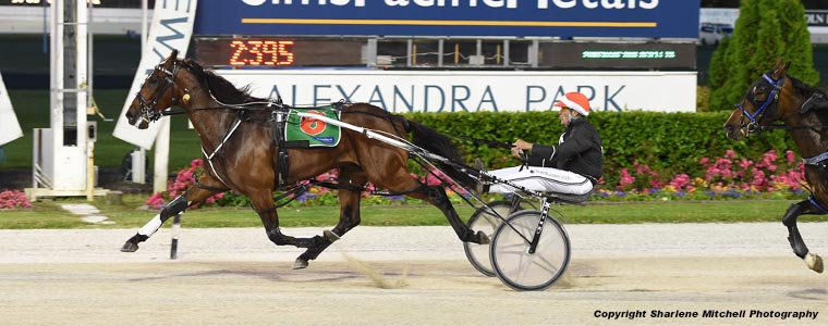Auckland Trotting Club – 30 November 2018
