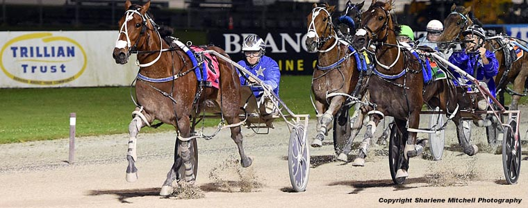 Auckland Trotting Club – 14 December 2018