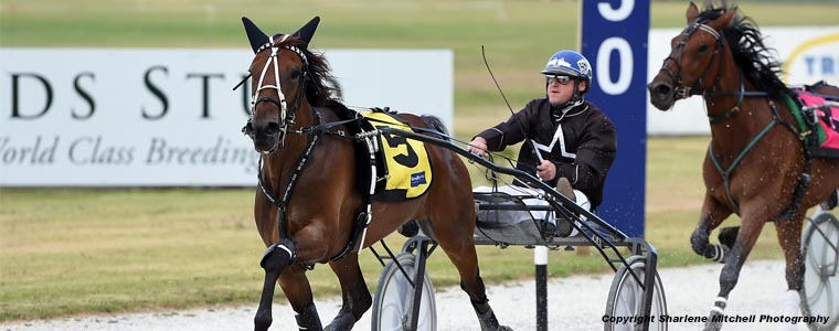 Auckland Trotting Club – 8 February 2019